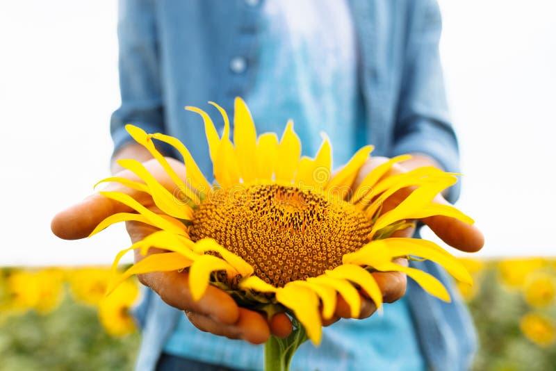 Grabben i exponeringsglas ligger under den bränning solen på gräset eller höet, sommarsemestern, stående av en man i exponeringsg royaltyfri foto