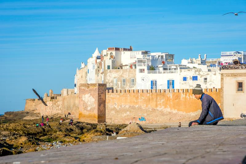 Grabbsammanträde på stadsväggen, Essaouira royaltyfri fotografi