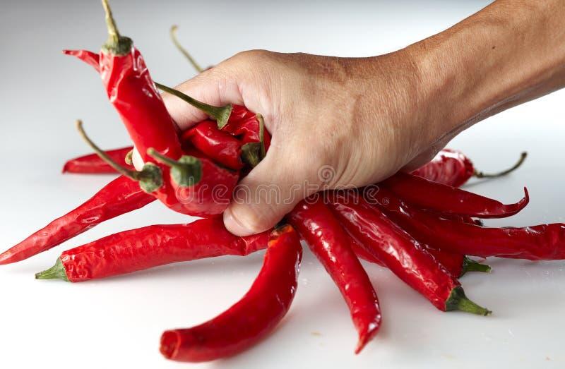 grabing chili ręka fotografia stock