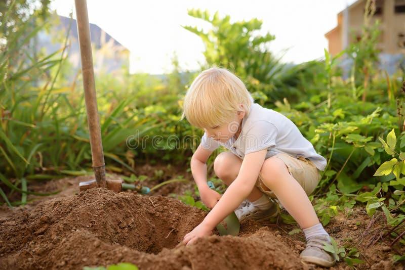Grabung des kleinen Jungen, die im Hinterhof am sonnigen Tag des Sommers schaufelt Kleiner Helfer der Mama stockbild