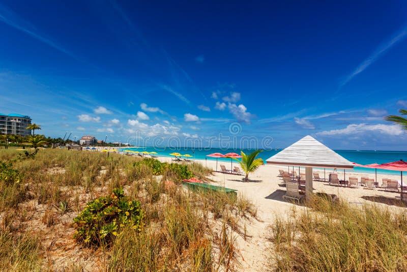Grace Bay beach dunes stock photos