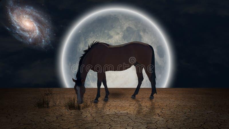 Grace Horse stock de ilustración
