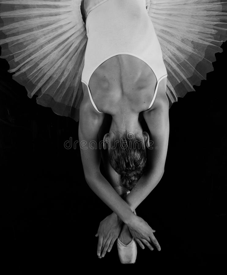 Back of the ballerina. Graceful ballerina in a ballet tutu and pointe from the back stock photo