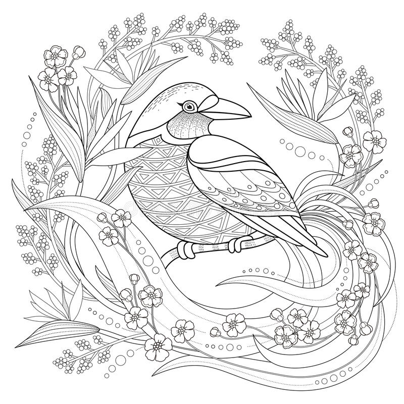 Graceful bird coloring page vector illustration