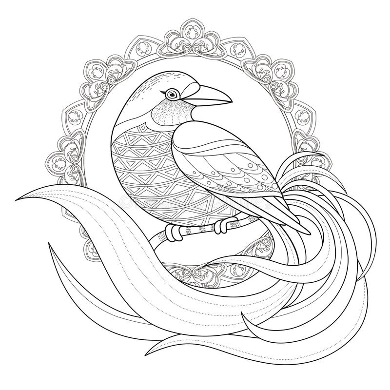 Graceful bird coloring page royalty free illustration
