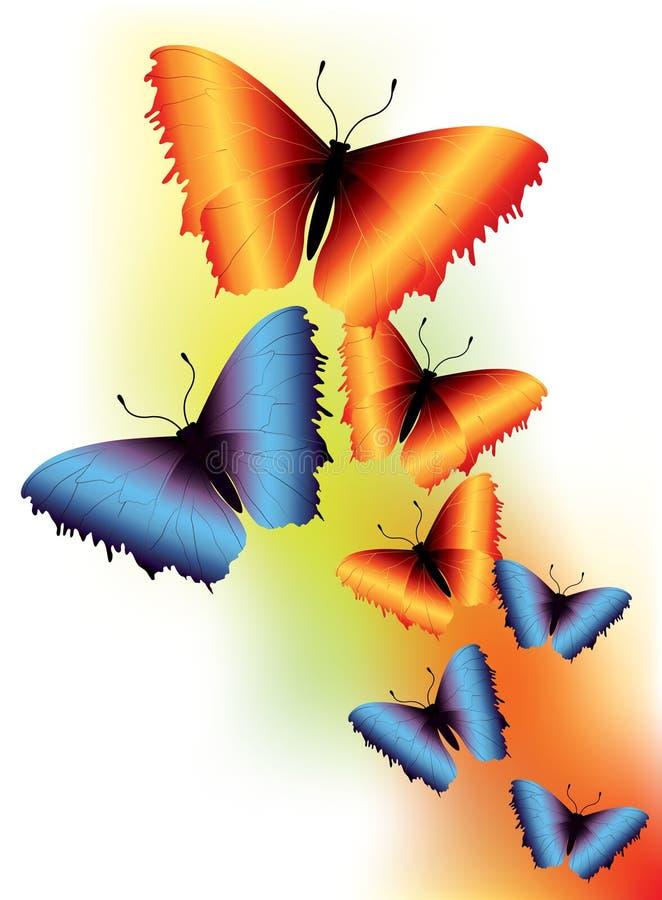 Graceful Butterflies Stock Photography
