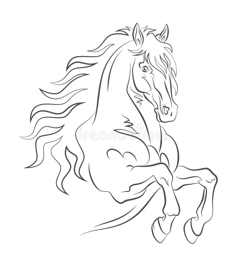 Free Graceful Horse Royalty Free Stock Images - 27463059