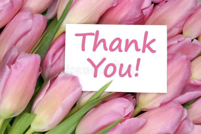 Gracias en el regalo de la tarjeta de felicitación con las flores de los tulipanes fotografía de archivo