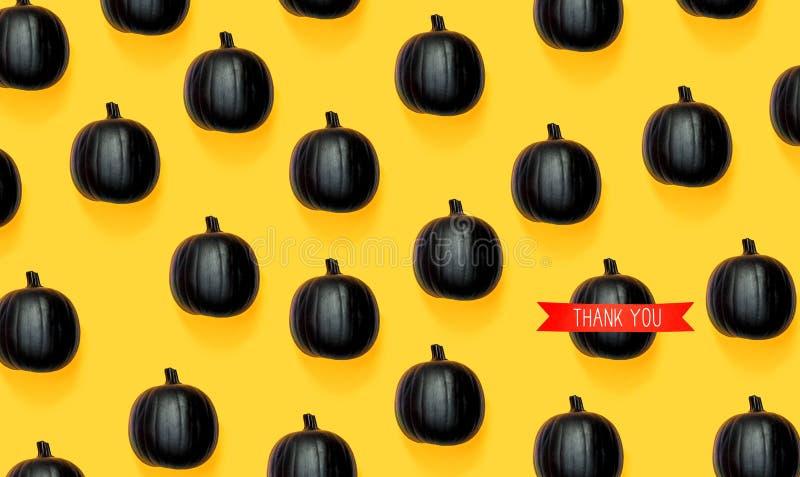 Gracias mensaje con las calabazas negras imágenes de archivo libres de regalías