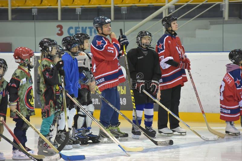 Gracz w hokeja zanim dopasowanie, zdjęcie royalty free
