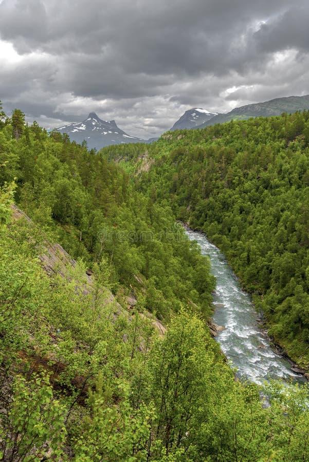 Graddiselva河主流在如在西部方向中看到的挪威诺尔兰从瑞典边界,斯堪的纳维亚语 图库摄影