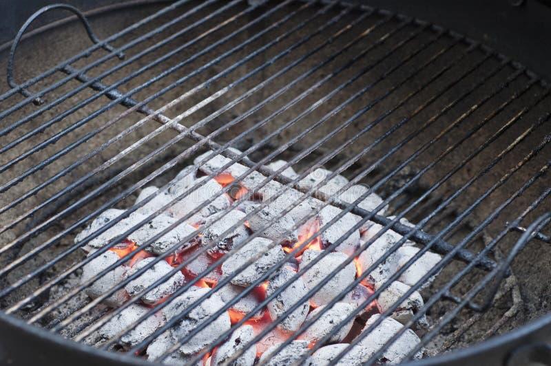 Grade do carvão animal imagem de stock