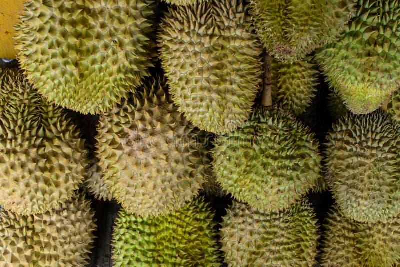 Gradiënt van Durian-Kleuren royalty-vrije stock afbeelding