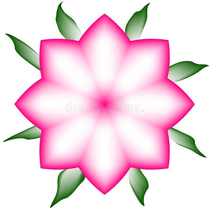Gradinent Roze Bloem royalty-vrije stock foto