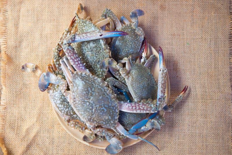 Grado crudo del premio del pelagicus del Portunus del cangrejo de la flor fotografía de archivo