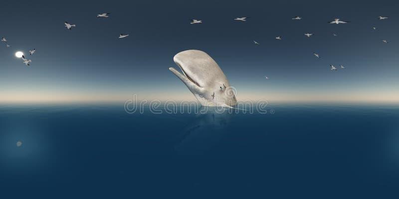 360 grados esféricos del panorama inconsútil con la ballena de esperma y las gaviotas libre illustration