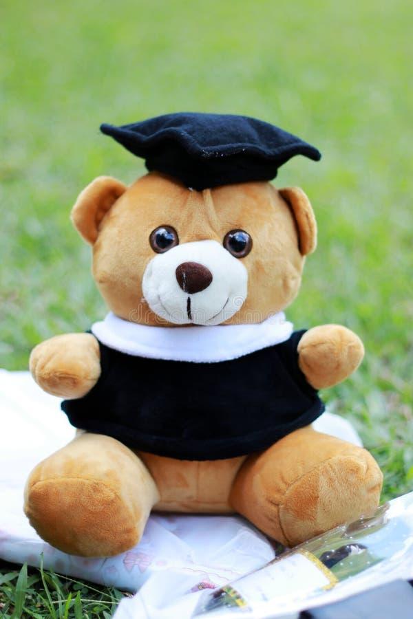 Graduação Teddy Bear Doll fotos de stock