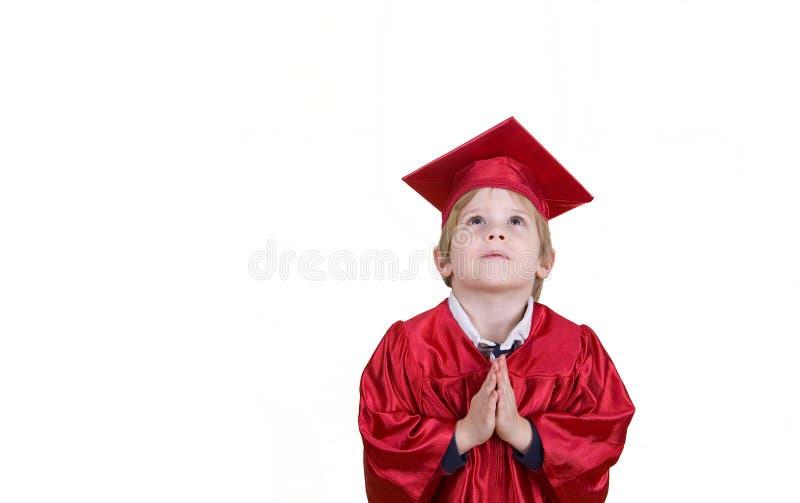 Graduate? royalty free stock photo