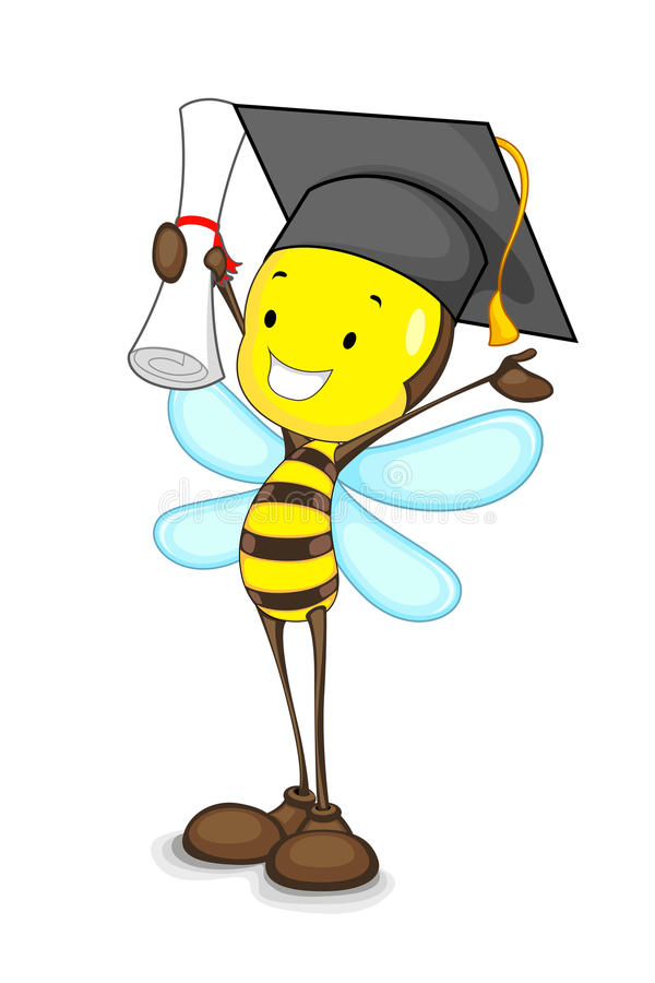 Free Graduate Bee Stock Photo - 25992580