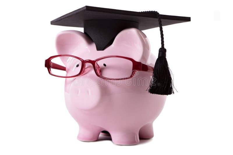College graduate Piggy Bank student graduation royalty free stock image