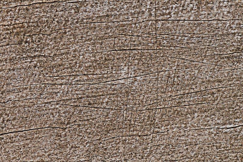 Graffio su legno per il modello ed il fondo immagine stock libera da diritti