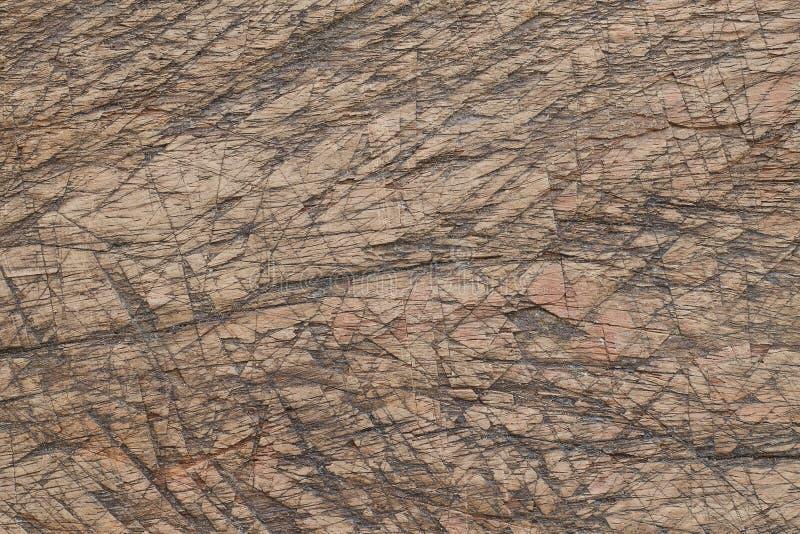 Graffio su legno per il modello ed il fondo immagine stock