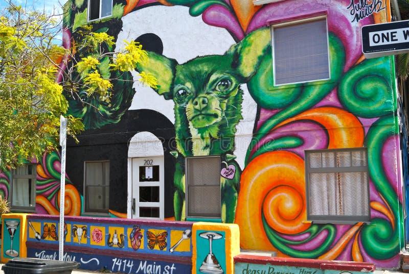 Graffiti della chihuahua fotografia stock libera da diritti