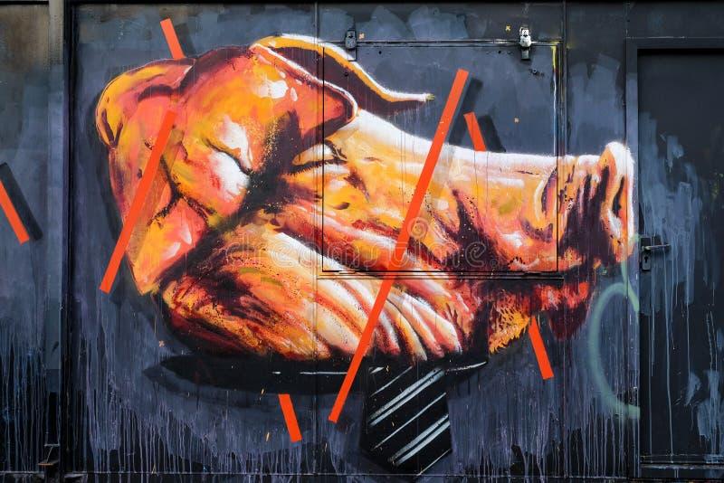 Graffiti of large pigs head stock photos