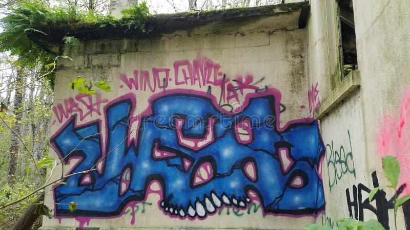 Graffiti na Zaniechanej ścianie przy Północnego stanu Umysłowym szpitalem obrazy royalty free