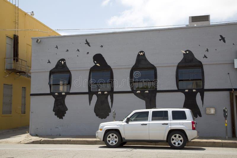 Graffiti ptaki na popielatej ścianie budynek zdjęcia royalty free