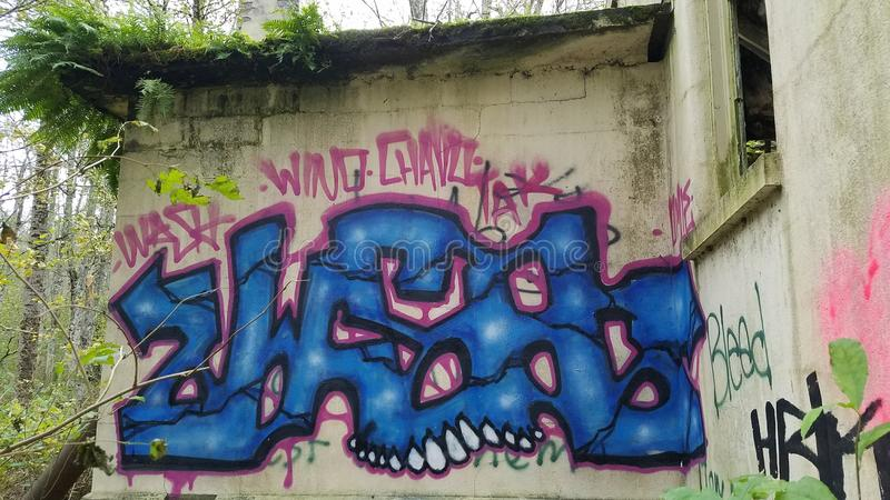 Graffiti sulla parete abbandonata all'ospedale psichiatrico nordico dello stato immagini stock libere da diritti