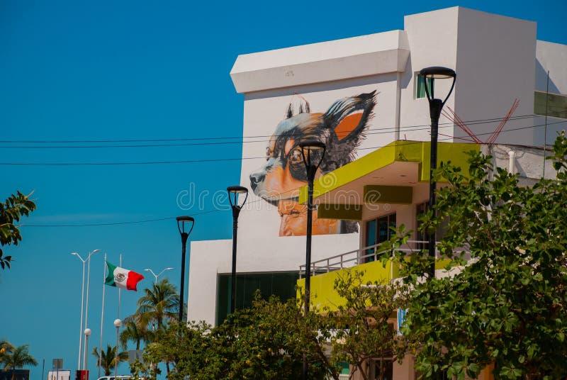 Graffiti sulla parete di una costruzione nella città Campeche, disegno una testa del maschio e un cane San Francisco de Campeche, immagini stock libere da diritti