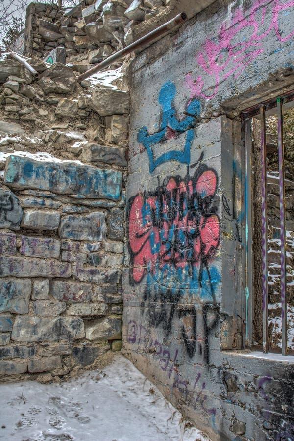 Graffiti Zakrywać ściany Hydroelektryczne rośliien ruiny fotografia royalty free