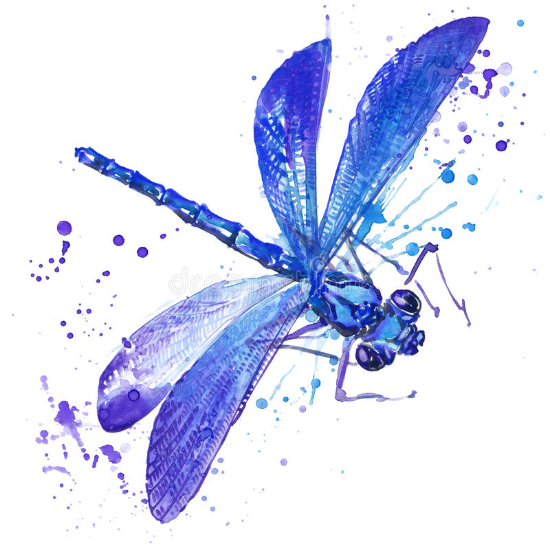 Grafici della maglietta dell'insetto della libellula illustrazione della libellula con il fondo strutturato dell'acquerello della illustrazione vettoriale