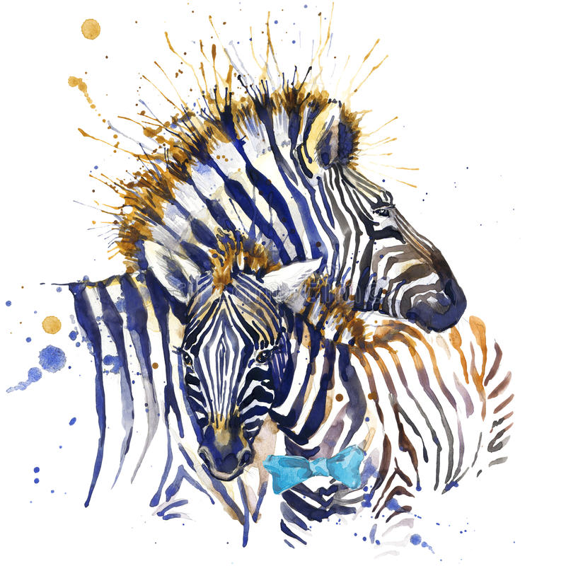 Grafici della maglietta della zebra illustrazione della zebra con il fondo strutturato dell'acquerello della spruzzata fashi inso illustrazione di stock