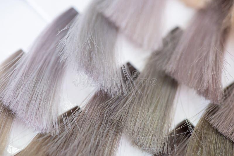 Grafico a colori dei capelli Tavolozza dei campioni brillanti tinti dei capelli Catalogo per la selezione in un salone di bellezz fotografie stock libere da diritti