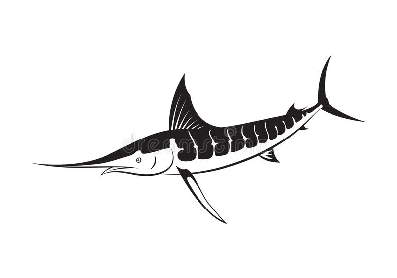 Graficzna marlin ryba, wektor ilustracji