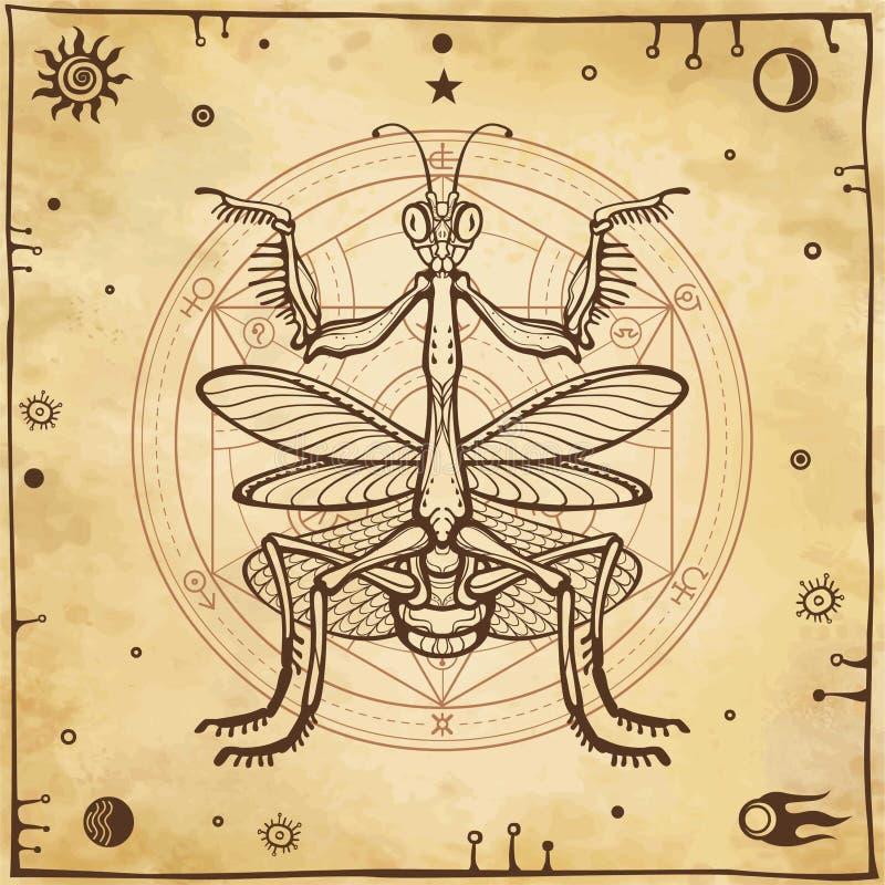 Graficzny dekoracyjny wizerunek modliszka Alchemical okrąg transformacje Ezoteryk, mistycyzm, czarnoksięstwo royalty ilustracja