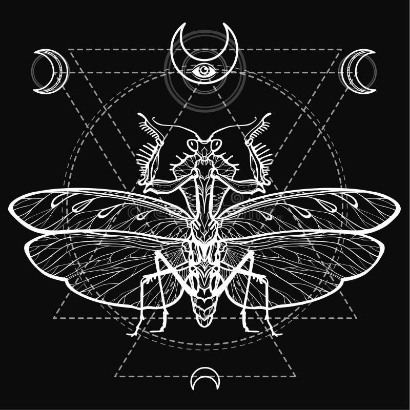 Graficzny dekoracyjny wizerunek modliszka geometria święta Ezoteryk, mistycyzm, czarnoksięstwo royalty ilustracja