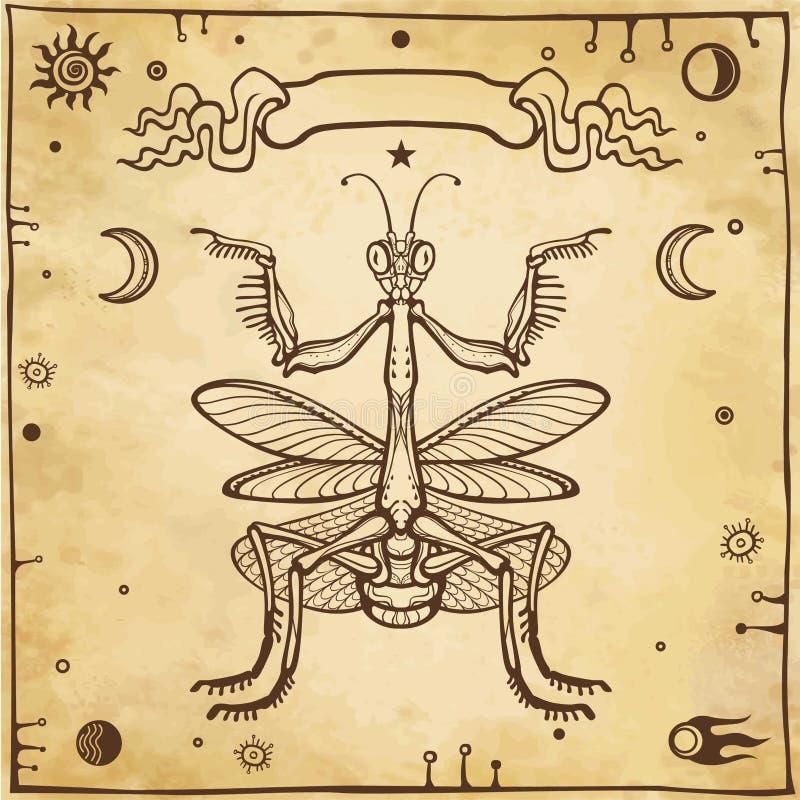 Graficzny dekoracyjny wizerunek modliszka modliszka Ezoteryk, mistycyzm, czarnoksięstwo Tło - imitacja stary papier ilustracja wektor