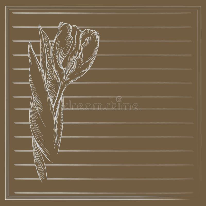 Graficzny kwiat, nakreślenie tulipan na brown tle kwiecisty wektor ilustracyjny royalty ilustracja