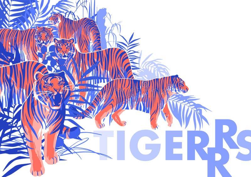 Graficzny projekt z tygrysami stoi, chodzi i ryczy wśród egzotycznych drzew i liści ilustracji