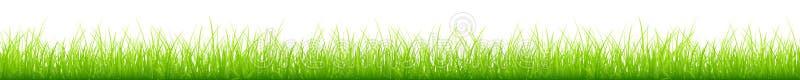 Grafische dünne grüne Wiesen-verschiedene Höhen-lange horizontale Fahne vektor abbildung