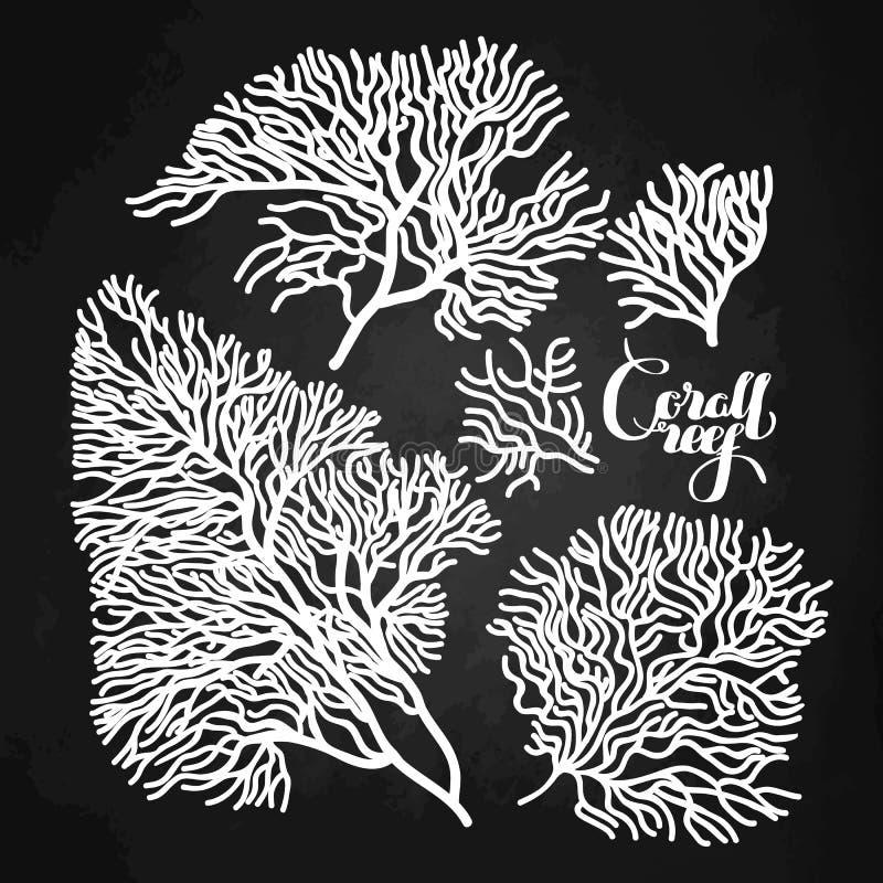 Grafische koraalinzameling royalty-vrije illustratie