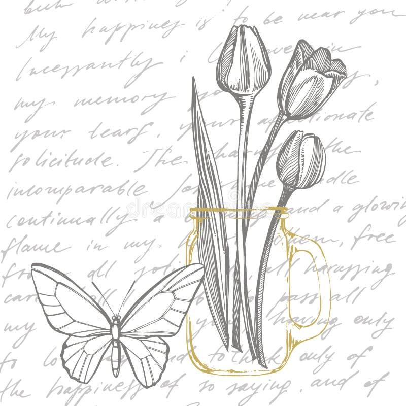 Grafische Skizzenillustration der Tulpenblume Botanische Betriebsillustration Kraut-Skizzensatz der Weinlese medizinischer der Ti vektor abbildung