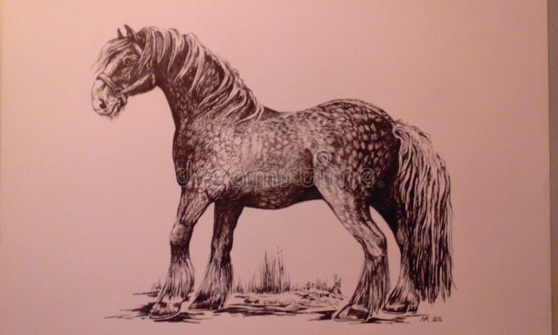 Grafische werkzaamheden voor paarden stock afbeeldingen
