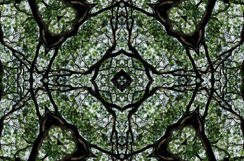 Grafisk bakgrund för trevlig modell av det gröna bladet och trädet vektor illustrationer