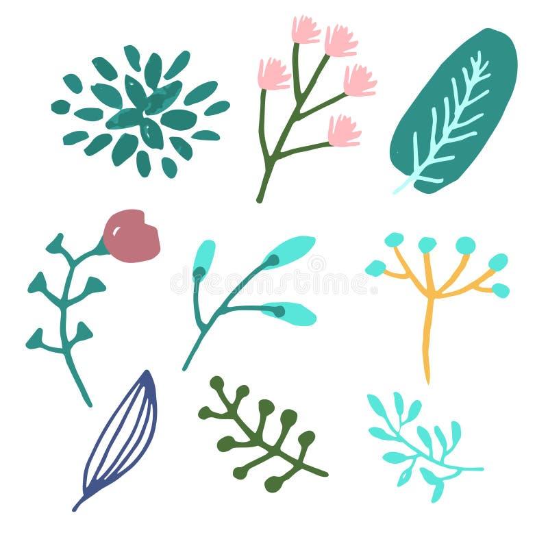 Grafisk design för blomma Vektoruppsättningen av blom- beståndsdelar med den drog handen blommar stock illustrationer