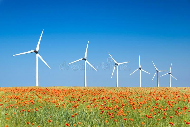 Grafiskt modernt landskap av vindturbiner i ett vallmofält royaltyfri foto