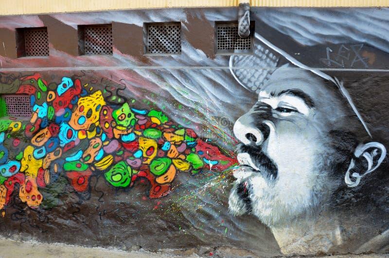 Grafitis τοίχων σε Valparaiso, Χιλή στοκ φωτογραφία με δικαίωμα ελεύθερης χρήσης